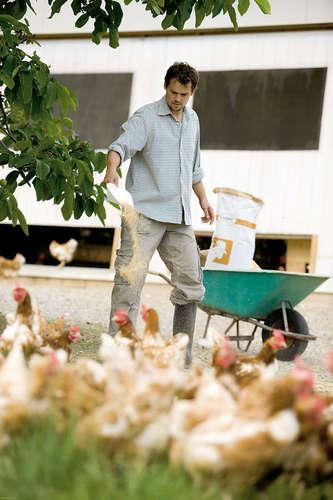 ©RWA - Hühner halten: Darauf sollten Sie achten