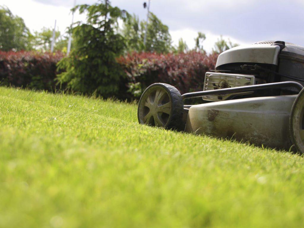 Rasenmähen gehört zur Pflege Ihres Grüns dazu. Durch das regelmäßige Kürzen werden Wachstum und Triebbildung des Rasens gefördert.