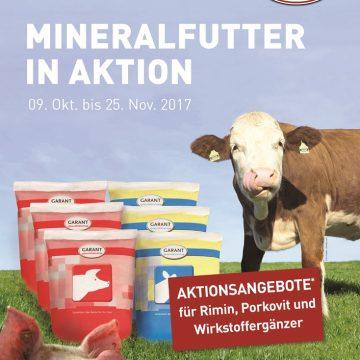 Vitaminschub für Ihre Rinder und Schweine