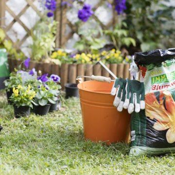 Ab in den Garten: Jetzt kommt der Frühling!