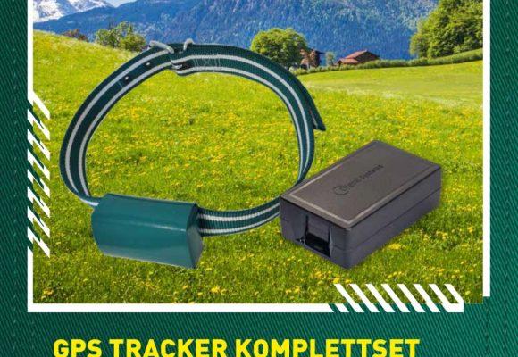 Der neue Q-Track