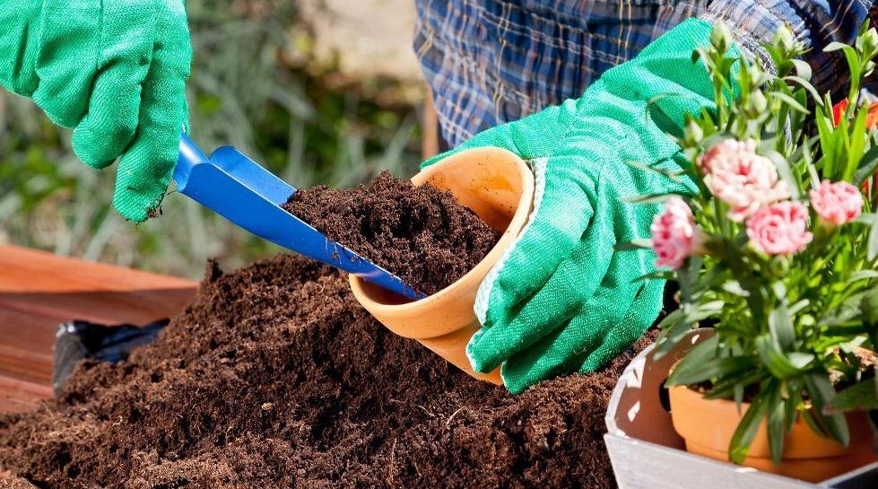 Die richtige Erde für Ihren Garten