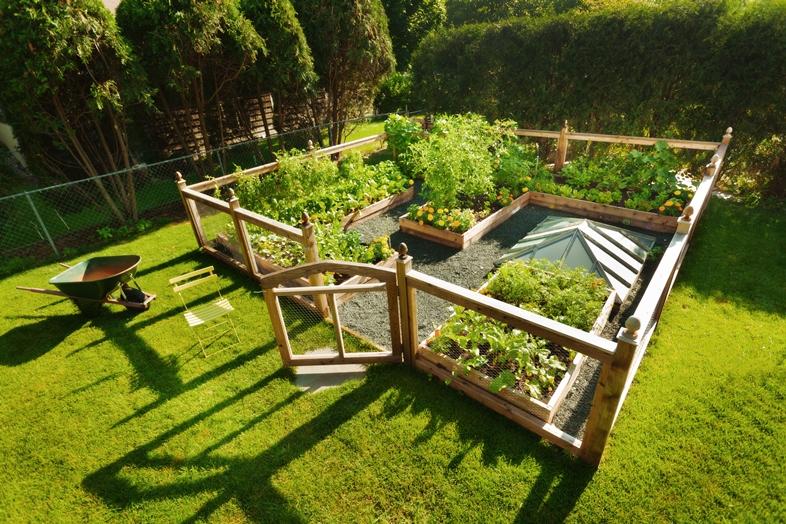 Kräuter für Küche, Balkon und Terrasse