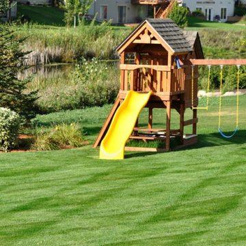 Tipps zur Rasenpflege im Sommer
